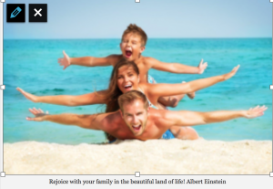Rejoice with your family in the beautiful land of life! Albert Einstein