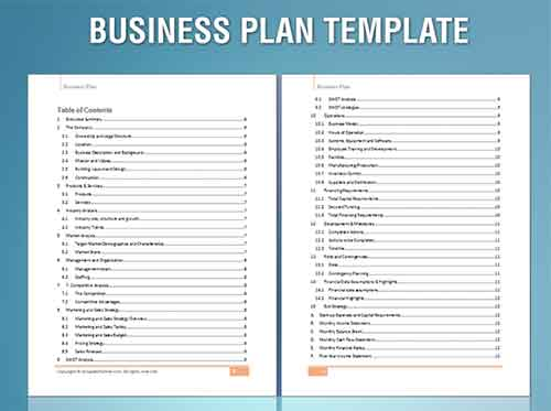 You maybe an analytical thinker with a business plan being the bet way to create your VISION.